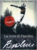 A Voz de Pasolini