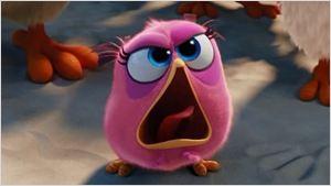 """""""Pássaros não devem ser bonzinhos!"""", prega Red no trailer final de Angry Birds - O Filme"""
