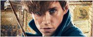 Você sabia que Newt Scamander apareceu em Harry Potter e Prisioneiro de Azkaban?