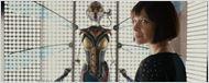 Homem-Formiga e a Vespa: Evangeline Lily divulga primeira imagem do uniforme da heroína