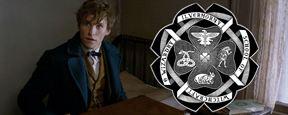 Fã de Harry Potter, saiba qual é a sua Casa na Escola de Magia dos EUA