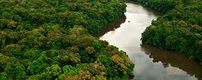 Netflix autoriza série original ambientada na fronteira entre Brasil e Colômbia