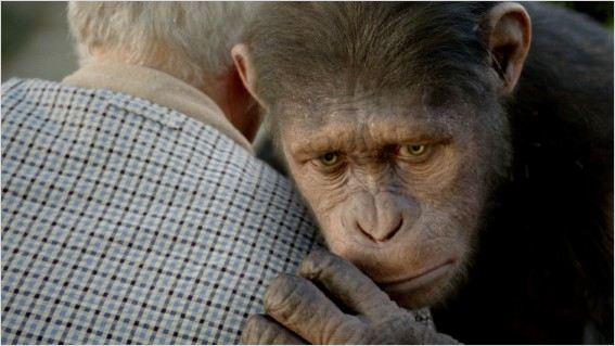Planeta dos Macacos - A Origem : foto