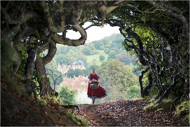 Caminhos da Floresta : Foto Lilla Crawford