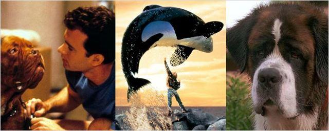 O que aconteceu com os nossos personagens animais favoritos dos anos 90?