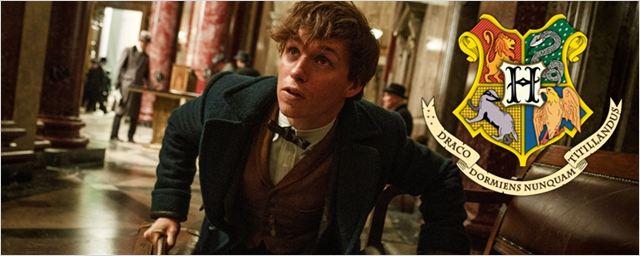 Fã de Harry Potter descobre os títulos das Casas da Escola de Bruxaria dos EUA