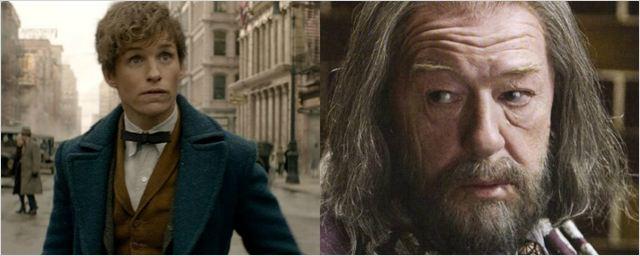J.K. Rowling revela mais uma conexão entre Newt Scamander e Dumbledore em livro de Animais Fantásticos
